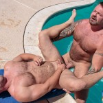 Bear Films Marc Angelo and Wade Cashen Hairy Muscle Bears Fucking Bearback Amateur Gay Porn 19 150x150 Hairy Muscle Bears Fucking Bareback At The Pool