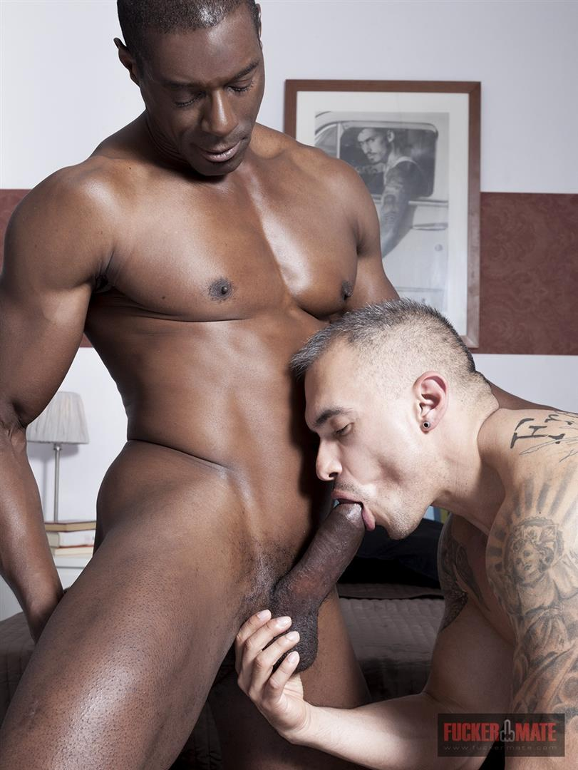 Fuckermate Titan and Santi Noguera Big Black Dick Barebacking Muscle Bottom Amateur Gay Porn 5 Big Black Horse Cock Aggressively Fucks A White Muscle Bottom