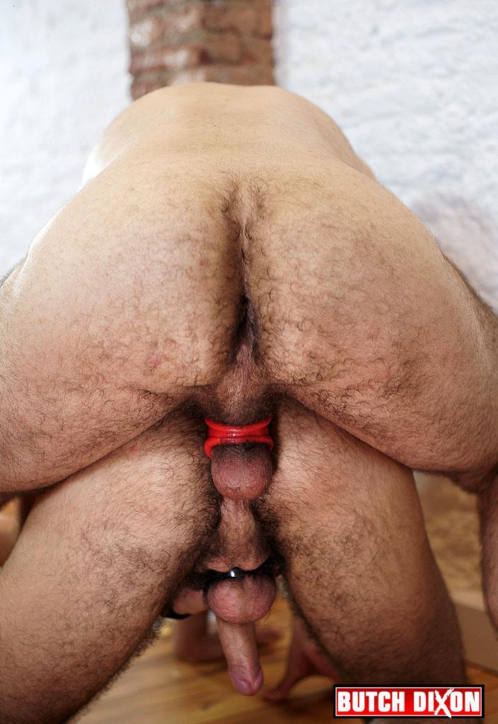 gay hairy uncut cock